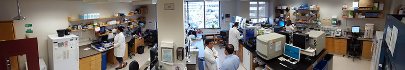 Lab-Panorama-shot-web.jpg